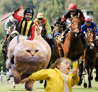 Photo of Thomas Bassetto riding a cat